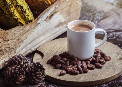 Kakao – Auf den Spuren der Azteken und Mayas